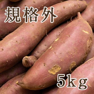 津南産 低温熟成シルクスイート(さつまいも)規格外品 5kg