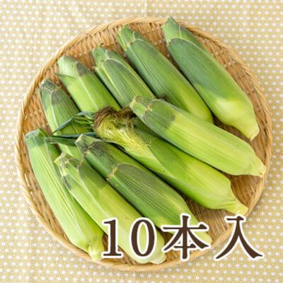 津南産トウモロコシ「わくわくコーン」5kg