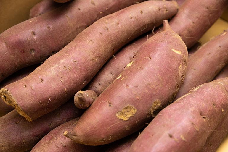 しっとり美味しいと人気の低温熟成サツマイモ