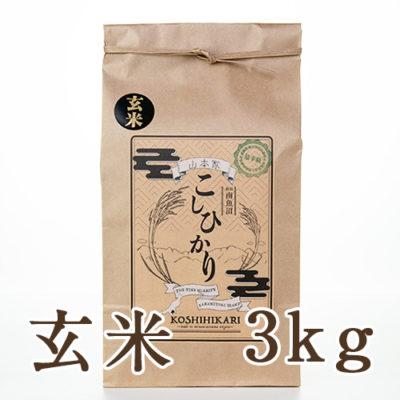 南魚沼産コシヒカリ 玄米3kg