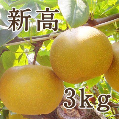 新高 3kg(4~6玉)