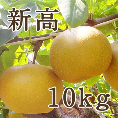 新高 10kg(12~20玉)