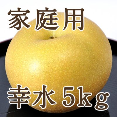 【家庭用】幸水 5kg(16~20玉)