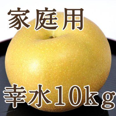 【家庭用】幸水 10kg(32~40玉)