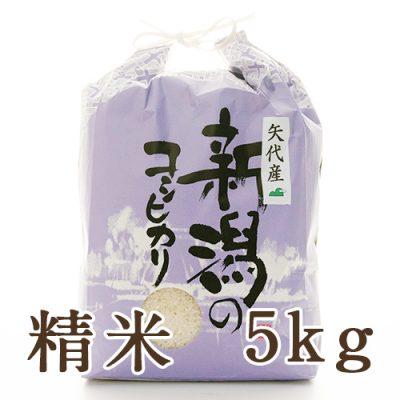 妙高矢代産コシヒカリ 精米5kg
