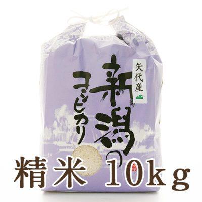 妙高矢代産コシヒカリ 精米10kg