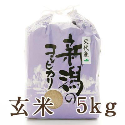妙高矢代産コシヒカリ 玄米5kg