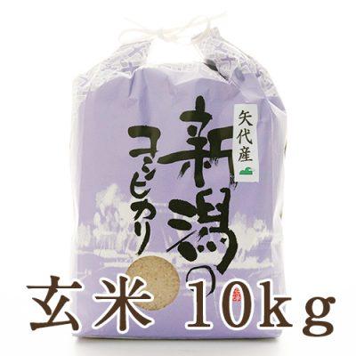 妙高矢代産コシヒカリ 玄米10kg