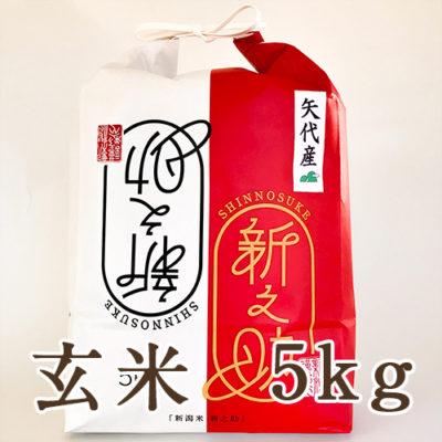 妙高矢代産 新之助 玄米5kg