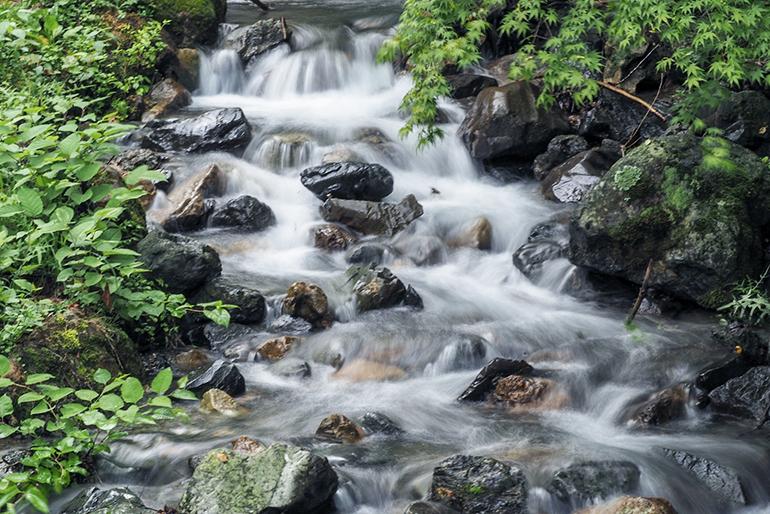 1.豊富なミネラル分を含む矢代川