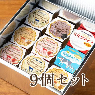 アイスクリーム9個セット