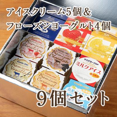 アイスクリーム5個&フローズンヨーグルト4個セット