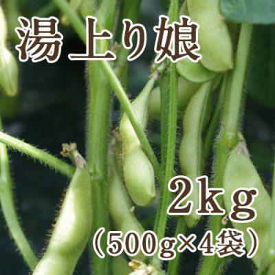 枝豆 湯上り娘 2kg(500g×4袋)