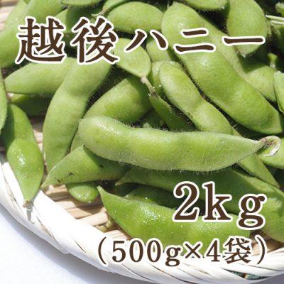 茶豆 越後ハニー 2kg(500g×4袋)