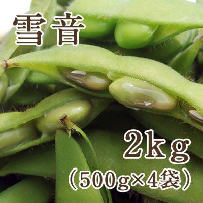 茶豆 雪音 2kg(500g×4袋)