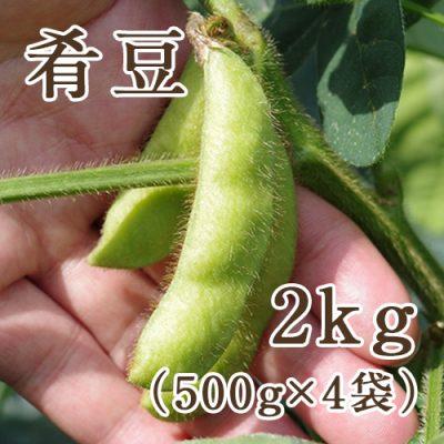枝豆 肴豆 2kg(500g×4袋)