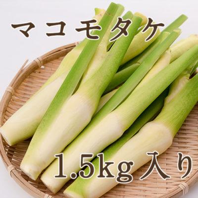 マコモタケ 1.5kg