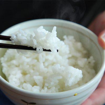 従来品種の特別栽培米コシヒカリ