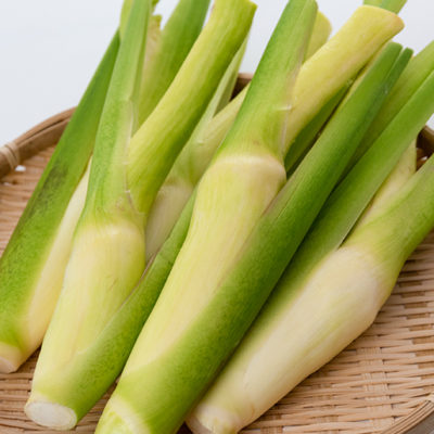 近年、人気上昇中の野菜「マコモタケ」